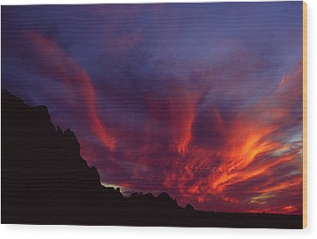 Phoenix Risen Wood Print by Randy Oberg