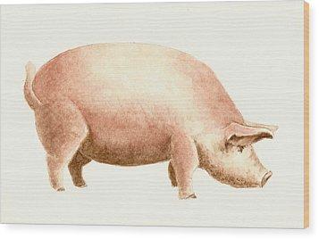Pig Wood Print by Michael Vigliotti