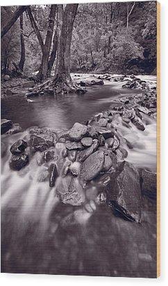 Pigeon Forge River Great Smoky Mountains Bw Wood Print by Steve Gadomski