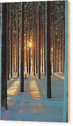 Pine Forest Wood Print by www.WM ArtPhoto.se