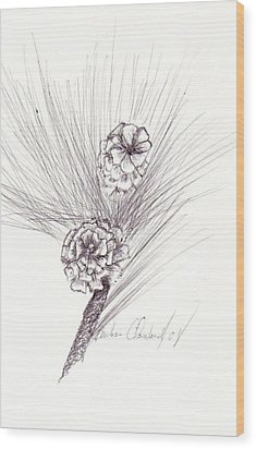 Pinecones Wood Print by Barbara Cleveland
