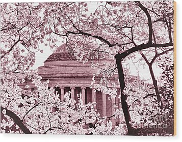 Pink Cherry Trees At The Jefferson Memorial Wood Print by Olivier Le Queinec