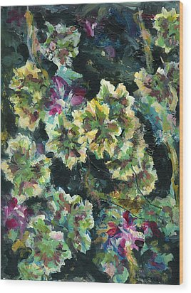 Pink Pelargonium Wood Print by Alexandra Cook