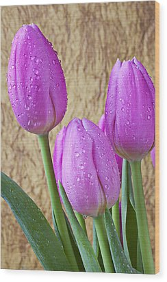 Pink Tulips Wood Print by Garry Gay