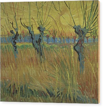 Pollarded Willows And Setting Sun Wood Print by Vincent Van Gogh