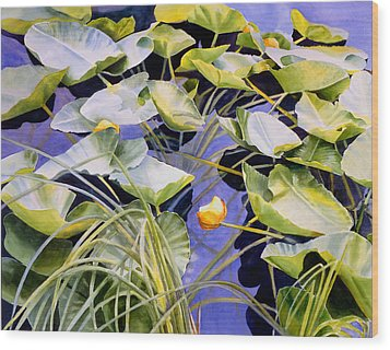 Pond Lilies Wood Print by Sharon Freeman