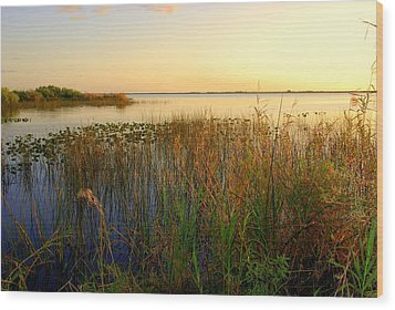 Pretty Evening At The Lake Wood Print by Susanne Van Hulst