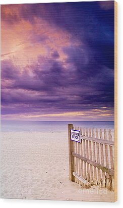 Private Beach Cape Cod Wood Print by Matt Suess