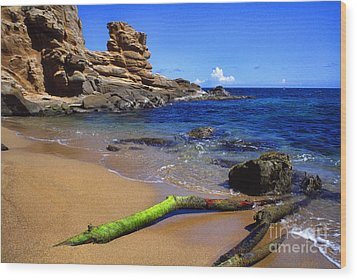 Puerto Rico Toro Point Wood Print by Thomas R Fletcher