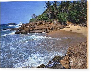 Punta Morillos Near Arecibo Wood Print by Thomas R Fletcher