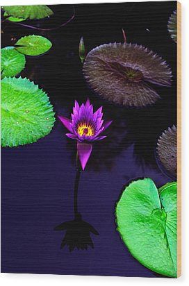 Purple Lily Wood Print by Gary Dean Mercer Clark