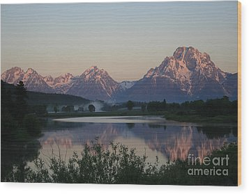 Purple Mountain Majesty  Wood Print by Paula Guttilla