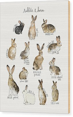 Rabbits And Hares Wood Print by Amy Hamilton