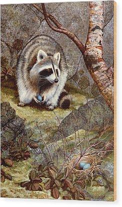 Raccoon Found Treasure  Wood Print by Frank Wilson