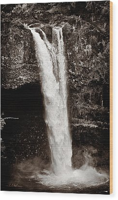 Rainbow Falls 2 - Sepia Wood Print by Christopher Holmes