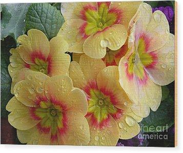 Raindrops On Yellow Flowers Wood Print by Carol Groenen