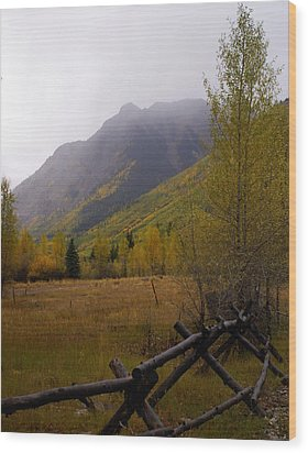 Rainy Fall Wood Print by Marty Koch