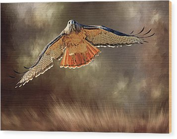 Raptor Wood Print by Donna Kennedy