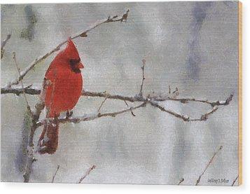 Red Bird Of Winter Wood Print by Jeff Kolker