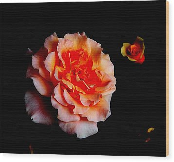 Red Rose And Bud Wood Print by Gaynor Perkins