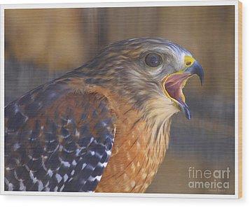 Red Shoulder Hawk Wood Print by Deborah Benoit