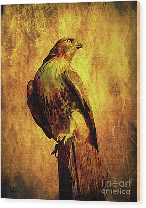 Red Tailed Hawk . Texture . 40d10167 Wood Print by Wingsdomain Art and Photography