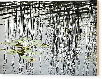 Reeds And Reflections Wood Print by Dave Fleetham - Printscapes