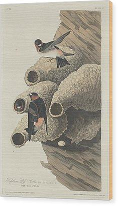 Republican Cliff Swallow Wood Print by John James Audubon