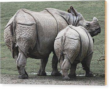 Rhinoceros Mother And Calf In Wild Wood Print by Daniel Hagerman