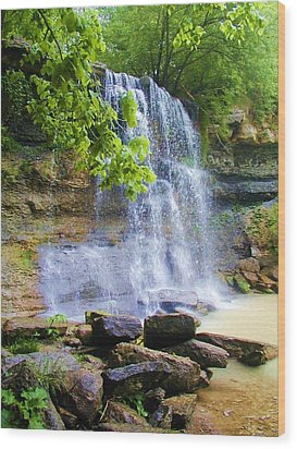 Wood Print featuring the photograph Rock Glen by Rodney Campbell