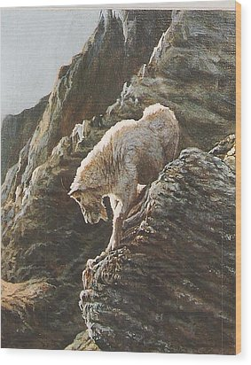 Rocky Mountain Goat Wood Print by Steve Greco