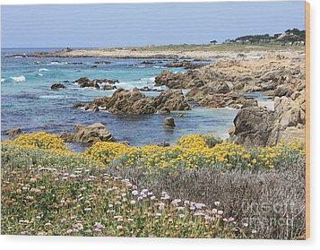Rocky Surf With Wildflowers Wood Print by Carol Groenen