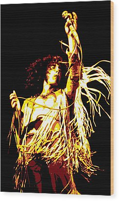Roger Daltrey Wood Print by DB Artist