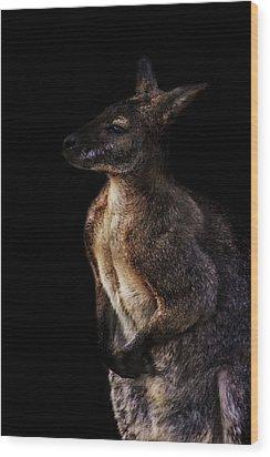 Roo Wood Print by Martin Newman