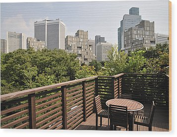 Roof Terrace Above Rappongi Tokyo Japan Wood Print by Andy Smy