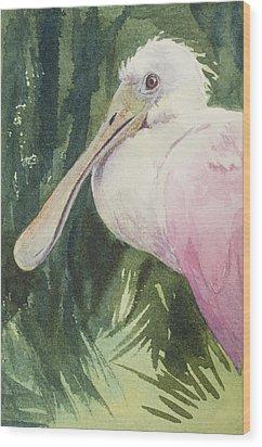 Roseate Spoonbill Wood Print by Kris Parins