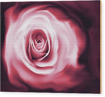 Rose's Whispers Magenta  Wood Print by Jennie Marie Schell
