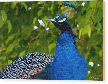 Royal Bird Wood Print by Christopher Holmes