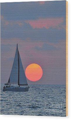 Sailboat At Sunset  Wood Print by Shay Levy