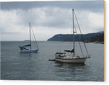 Sailboats In Bar Harbor Wood Print by Linda Sannuti