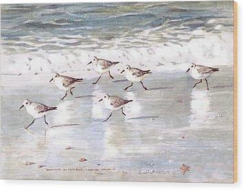 Sandpipers On Siesta Key Wood Print by Shawn McLoughlin
