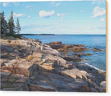 Schoodic Shoreline  Wood Print by Scott  Bricker