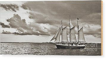 Schooner Pride Tallship Charleston Sc Wood Print by Dustin K Ryan