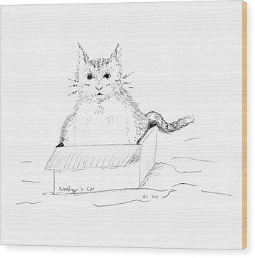 Schrodinger Cat Wood Print by Regina Valluzzi