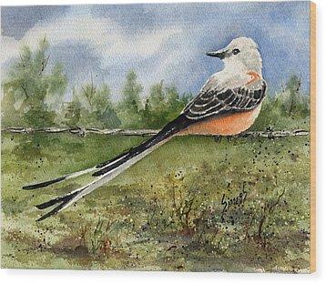 Scissor-tail Flycatcher Wood Print by Sam Sidders