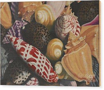 Sea Shells Wood Print by Sid Ball