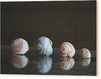 Sea Snails Wood Print by Linda Sannuti