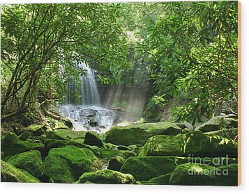Secret Paradise - Hidden Appalachian Waterfall Wood Print by Matt Tilghman