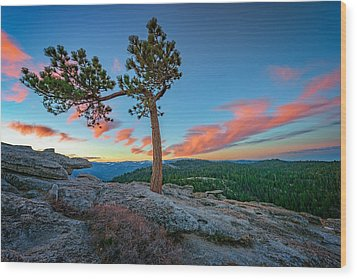 Sentinel Dawn Wood Print by Rick Berk
