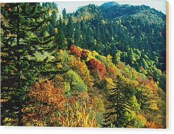 September Mountainside Wood Print by Kevin  Sherf
